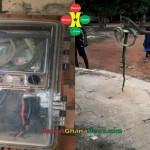 Snake Found in a Meter at Ejusu Donaso