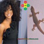 Watch Video: Stephanie Benson Found Lizard In Her Room