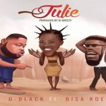 Watch Official Music Video: D-Black – Julie ft. Bisa Kdei
