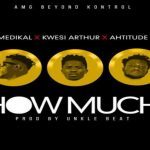 Watch Official Music Video: Medikal – How Much ft. Kwesi Arthur & Ahtitude
