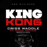Watch Official Music Video: Criss Waddle – King Kong ft. Kwesi Arthur